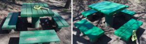 Picture of green bench painted for Earth Day
