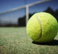 tennis-ball-984611_960_720-300x187